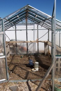 greenhouse-cleanup