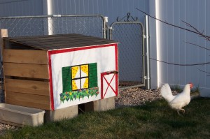 Colorful chicken coop with chicken