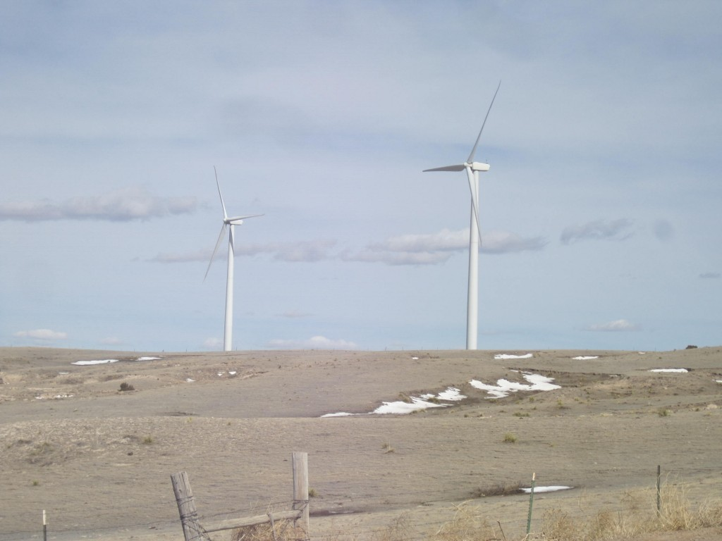 Field of Windmills