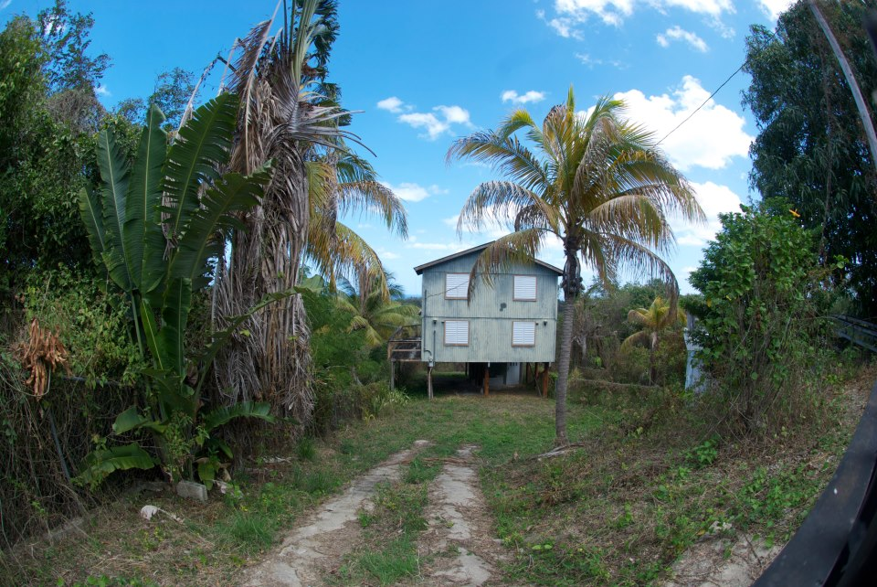 Rincon House Fish Eye