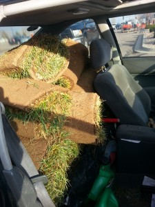 Sod in Honda