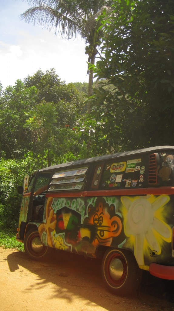 VW Bus in jungle