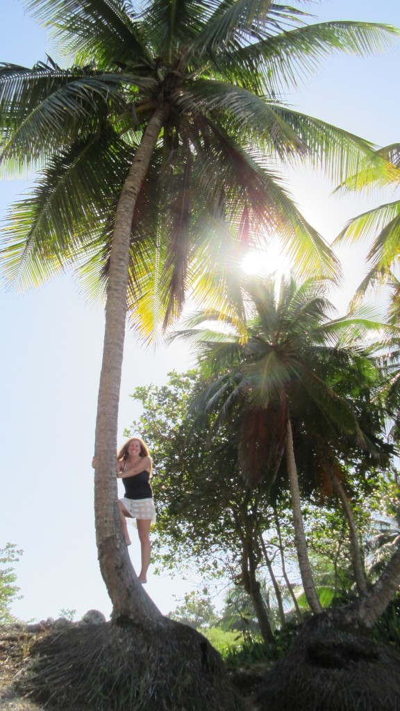 Cassie in a coconut tree