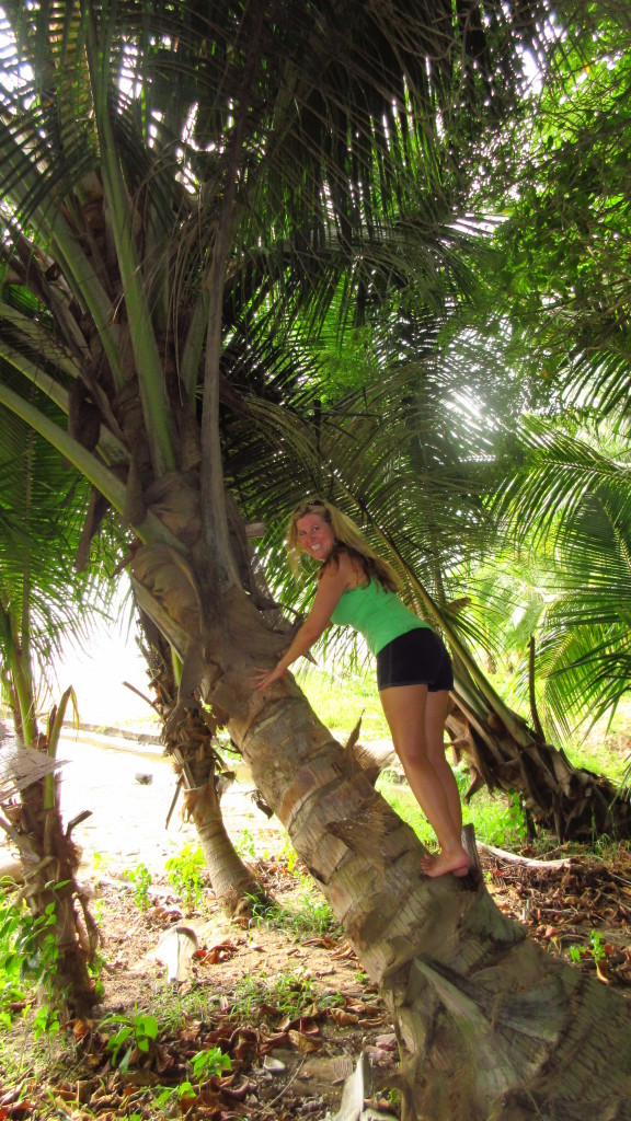 Cassie in Coconut Tree