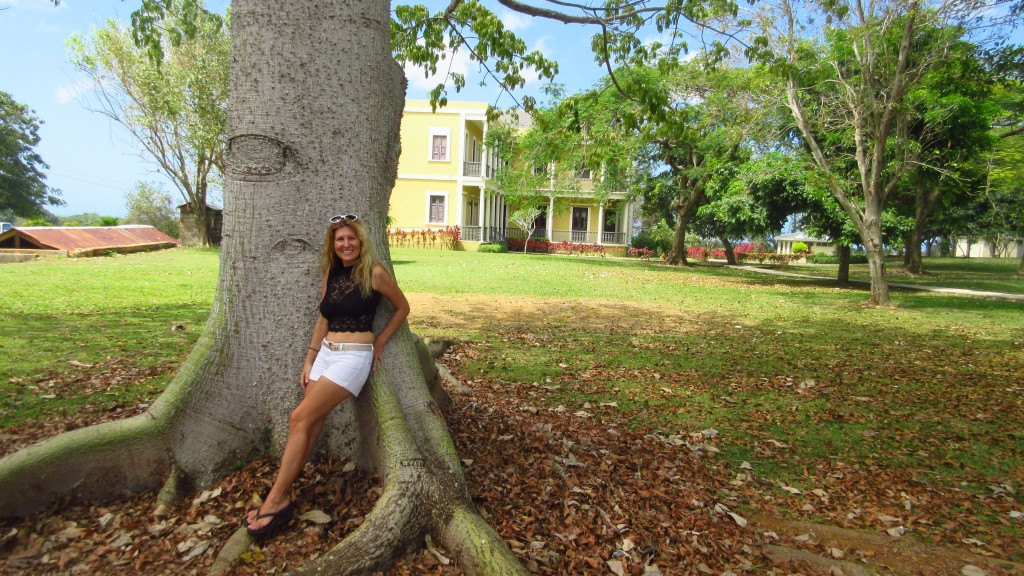 Cassie and Ceiba tree